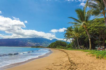 hawaii condo and home maui